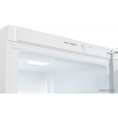 Холодильник Snaige RF39SM-S0002G0
